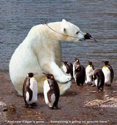 Pinguins e ursos polares eternos amigos