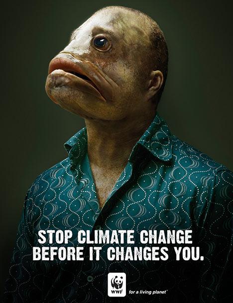 Cabeça de peixe - mude sua atitude e evite o aquecimento global