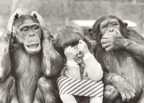 A nova educação - os macacos, blogueiros e Lula