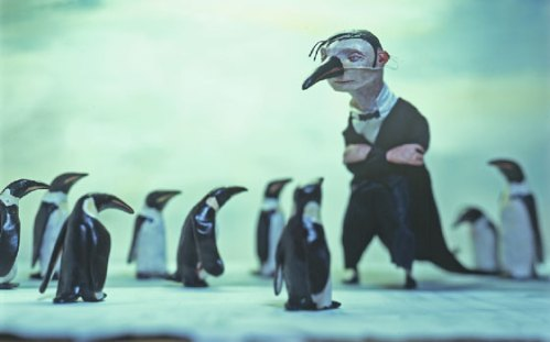 Pinguins e o homem by red nose studio