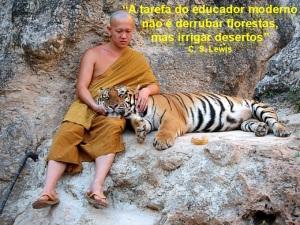 Os tigre e o budismo